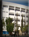 Faculty of science in Damanhur was established according to the presidential decree 87/2007 as one of the faculties in Damanhur <a href='http://www.google.com.eg'>More</a>